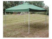 Green Pop-up Canopy (10' x 10')