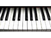 Piano Keyboard Aluminum License Plate - SB-LP1334