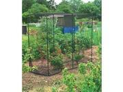 GARDMAN 7662 Large-size Fruit Cage gives crop protection with touch woven black mesh, Made from painted tubular steel, Push fit plastic joints, Walk-in doors, 9 ft. 10 inches x 6 ft. 6 inches x 6 ft.