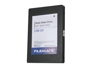 "Wintec FileMate 3FMS2S256M-R 2.5"" 256GB SATA II MLC Internal Solid State Drive (SSD)"