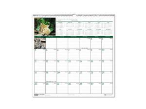 Kittens Monthly Wall Calendar, 12 x 12