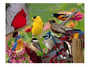 Impact Photographics IMP52130CLC Cleaning Cloth Backyard Birds