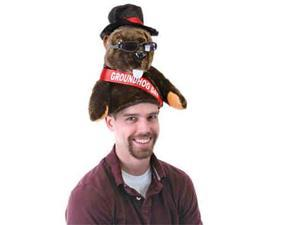 Beistle 60221 Plush Groundhog Day Hat - Pack of 4