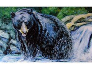 Custom Printed Rugs DM  02 Black Bear Door Mat