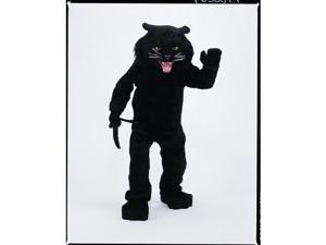 Costumes For All Occasions CM69023 Panther Black Mascot Complete