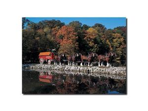 Trademark Poker AB266-C1419GG Clydesdales in Fall by Stone Pond- 14 x 19 Canvas