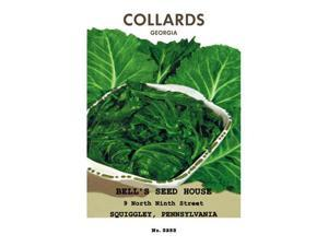 Buyenlarge 02592-1P2030 Collards - Georgia 20x30 poster