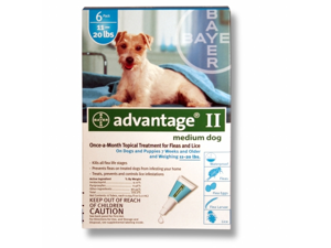 BAYER 004BAY-04461731 Advantage II for Medium Dogs 11 - 20 lbs, Teal - 6 Months