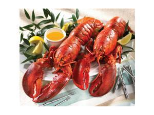 Lobster Gram LG2J LOBSTER GRAM DINNER FOR TWO WITH 2 LB LOBSTERS