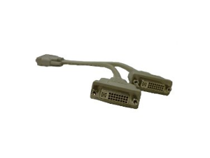 DVI-D Splitter Cable - 12 Inches - 1 x DVI Male to 2 x DVI Female