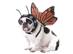 Butterfly Dog Costume - Animal Planet Dog Costumes