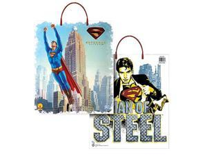 Superman Trick or Treat Bag - Superman Costume Accessories