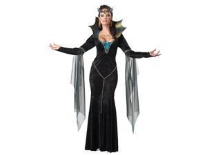 Evil Sorceress Queen Dress Costume Adult Small 6-8