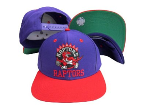 Toronto Raptors Word Purple / Red Two Tone Plastic Snapback AdjustableCap