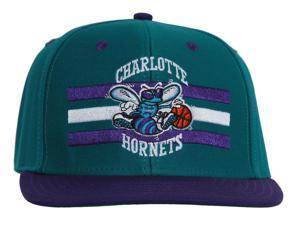 NBA Charlotte Hornets Horizon Billboard Snapback Hat Cap Retro-Teal/Purple