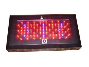 LIGHTHOUSE 240W Blackstar UV LED Grow Light 3w LED's
