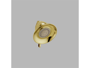 Delta RP34355PB Polished Brass Touch-Clean 3-Setting Showerhead