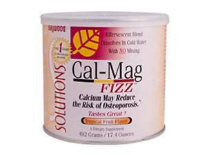 Cal-Mag Fizz, Tropical Fruit Flavor, Calcium & Magnesium Supplements, 492 Grams, Cal Mag Fizz, From Baywood