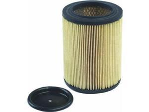 Shop-Vac Cartridge Filter.