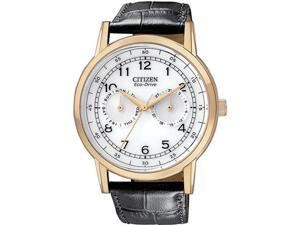 Citizen AO9003-16A Gold Tone Stainless Steel Case White Dial Day and Date Display Leather Strap