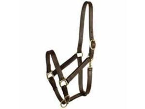 Halter - Leather Halter Stable With Snap Yearling