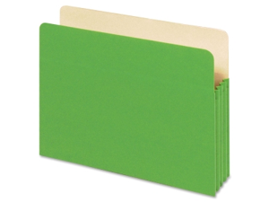 Globe-Weis Colored File Pocket 1 EA