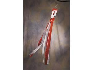 Bsi Products 79020 Wind Socks  - Wisconsin Badgers