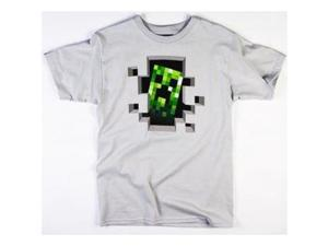 Minecraft Creeper Inside Men's T-Shirt (XXL, Grey)