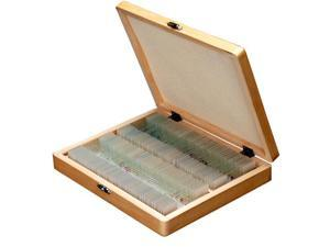 AmScope 100 Homeschool Biology Prepared Microscope Slides - Set E