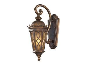 1 Light Outdoor Sconce In Hazlenut Bronze And  Amber Scavo Glass