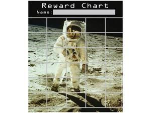 SPACE MINI REWARD CHARTS