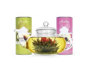 Primula KPTA-0001 Daisy Teapot w/ 24 Tea Flowers