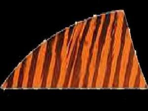 "Gateway Feather Rayzr 2"" Rw Feathers Orange Barred"