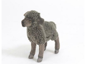 "Little Black Lamb 7.09"" by Hansa"