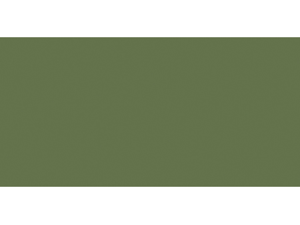 Ceramcoat Acrylic Paint 2 Ounces-English Yew Green/Semi-Opaque