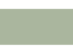 Ceramcoat Acrylic Paint 2 Ounces-Eucalyptus/Opaque