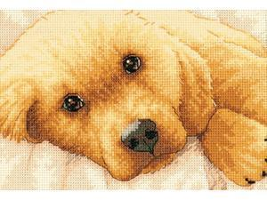 """Gold Collection Petite Golden Puppy Counted Cross Stitch Kit-7""""X5"""""""