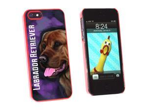 Chocolate Labrador Retriever Pink - Dog Pet - Snap On Hard Protective Case for Apple iPhone 5 - Red