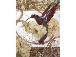 Humming Bird II Poster Print by Sofi Taylor (11 x 14)