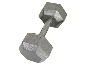 USA Sports Individual 15lb Cast Iron Hex Dumbbell by Troy Barbell