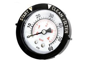 Pentair Back Mount Pressure Gauge with Indicator