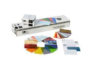 Zebra 100 Card K-PVC UHF RFID Card GEN2 30MIL NXPG2XM