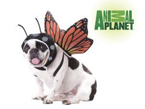 Animal Planet Butterfly Dog Pet Costume Small