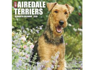 Just Airedale Terriers 2018 Wall Calendar by Willow Creek Press