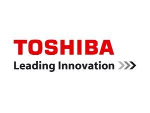 Toshiba IKS-WB9518 Network Camera - Color, Monochrome