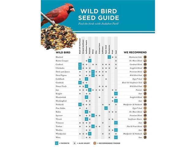 Audubon Park 12236 Straight Wild Bird Food 10 lb Bag Seed (070187851856 Electrician Tools) photo