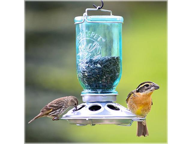 Perky Pet 784 Glass Mason Jar 32 Ounce Wild Bird Feeder w/ Metal Base (078978515086 Home & Garden Decor Garden Sculptures) photo