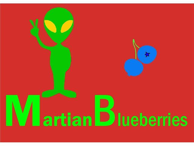 Martian Blueberries