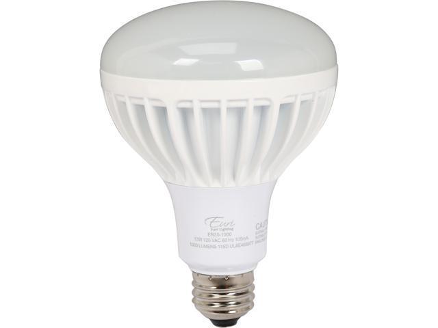 euri lighting er30 1000 100 watt equivalent led light bulb. Black Bedroom Furniture Sets. Home Design Ideas