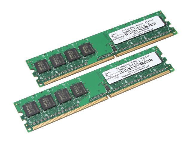G.SKILL 1GB (2 x 512MB) 240-Pin DDR2 SDRAM DDR2 667 (PC2 5300) Dual Channel Kit Desktop Memory Model F2-5300PHU2-1GBNT